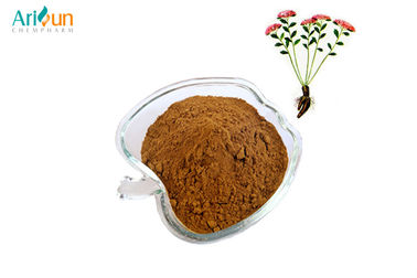 China Rhodiola Rosea Extract Plant Extract Powder For Herbal Medicine Herbal Supplement supplier