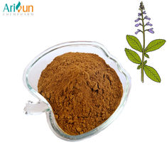 China Pure Plant Extract Powder , Coleus Forskohlii Root Extract  Weight Loss Forskolin 20% 40% supplier