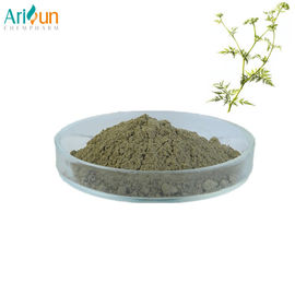China Male Health Grade Plant Extract Powder Osthole 10% 20% 35% 98% Relieving Asthma Antifungus supplier