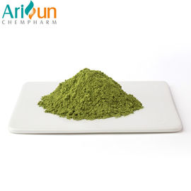 China good quality Pure Plant Extract Powder  , Preventing Disease Matcha Green Tea Powder For Health on sales