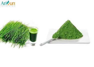 Anti-Oxidant、 Maintain Beauty and Keep Young -- Green Barley Grass Juice Powder