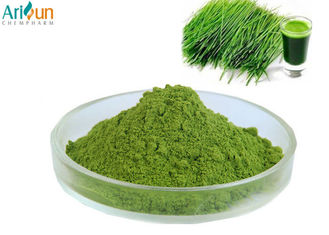 China Natural Food Coloring Powder Barley Grass Juice Powder For Food Addtives supplier