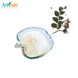 Good Quality Plant Extract Powder & Anti Aging Anti Cancer Polygonum Cuspidatum Extract Protecting Heart Circulatory System on sale