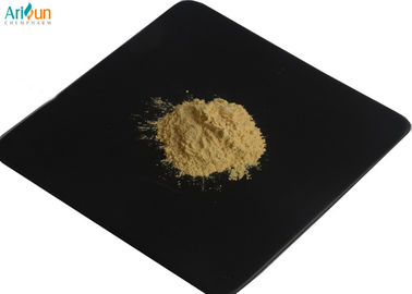 Good Quality Plant Extract Powder & Panax Red Ginseng Root Extract  With 80% Ginsenosides Rb1  Rk1 Pharmaceutical Grade on sale