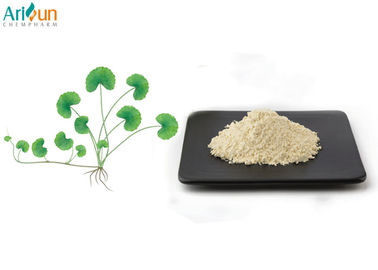 China Centella Asiatica Extract Powder,Total Glycosides 80% for High-end Skin Care Products factory